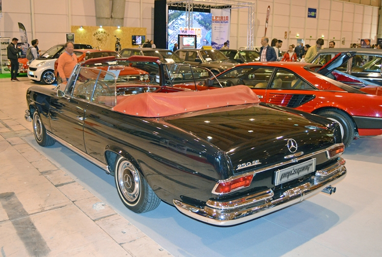 Mercedes Benz 250SE Convertible (rear)